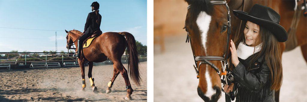 צילומי ילדה עם סוסים